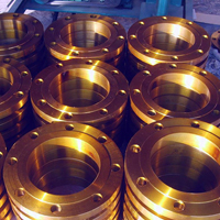 Cu-Ni Ring Type Joint Flanges