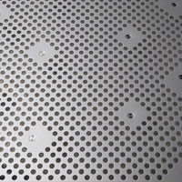 Stainless Steel 310 / 310S Perforated Sheets